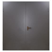 Техническая металлическая дверь TD-003 (нитроэмаль снаружи и внутри)